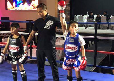Muay Thai Champions